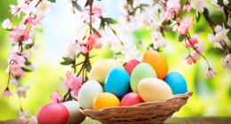 <b>Offerte Pasqua 2019 </b>